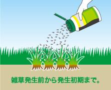 顆粒 除草 剤